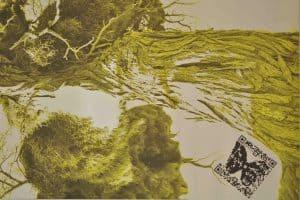 "Sabine Schäfer: Audio Biospheres Yellow, 2017 (segment), Exhibition ""Communication as a Processes of Life"" @ Castle Lautrach, 20.03.-20.10.2018"